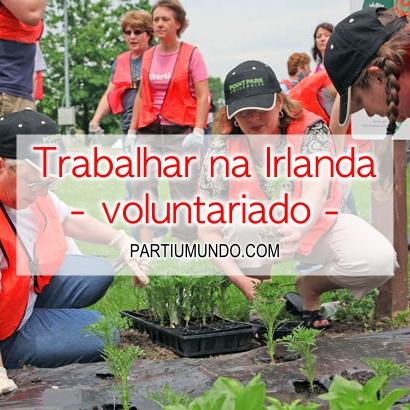 trabalhar na irlanda - voluntariado 1